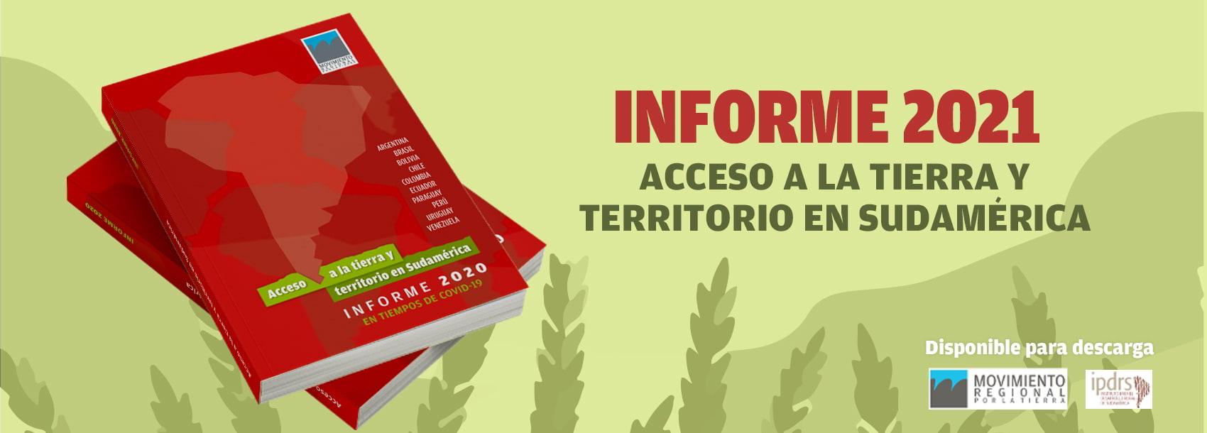 IPDRS, Informe 2020